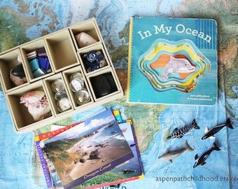 Reggio Loose Parts, Ocean, Dolphin, Tinker Tray, Montessori Geography, Biomes