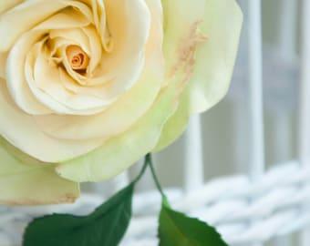 Brooch Rose