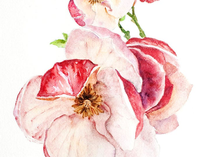 15 off coupon on magnolia watercolor original artwork magnolia magnolia watercolor original artwork magnolia painting pink watercolor magnolia wall art pink flowers mightylinksfo