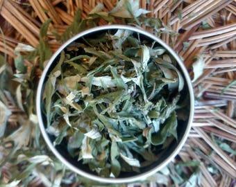 Mugwort Herb, Herbal Incense, Dreaming Plant