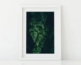 Wall Art, Wall Art Printable, Greenery, Wilderness, nature, Room Decor,