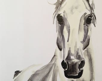 White Horse Watercolor PRINT