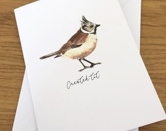 Crested tit greetings card