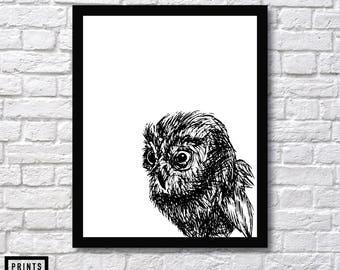 Owl Art, Wall Art Print, Owl Art Sketch, Room Decor, Owl Wall Print, Owl Sketch, Owl Hoot Art, Owl Wall Decor, Owl Art, Owl Inspiration