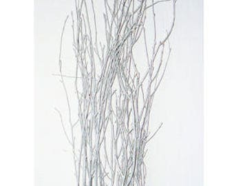 Silver Glittered Birch Branches | Silver Birch | Birch Branches