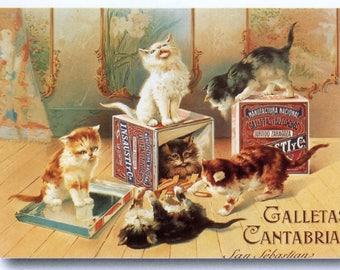 Galletta Vintage French Poster Print