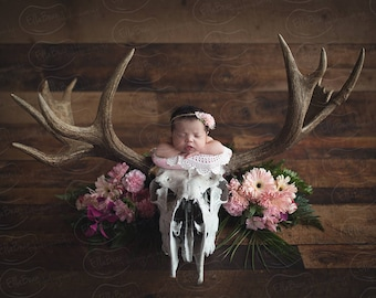 Newborn Digital Backdrop Moose Skull Fresh Flowers Rustic Organic