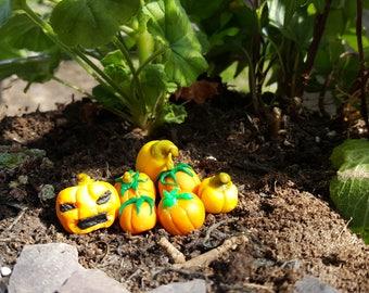 5x Misc Pumpkin/Gourd Miniatures