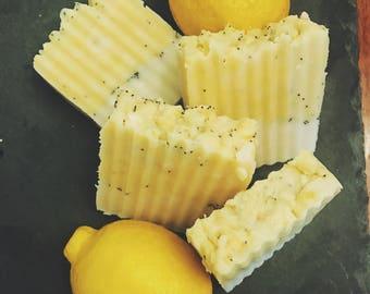 Homemade Soap/Skincare/All Natural/Bar Soap
