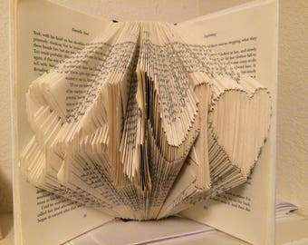 Amazing Custom Book Art