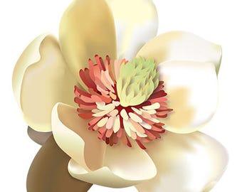 Magnolia! Sticker