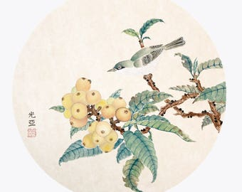Loquat with Bird
