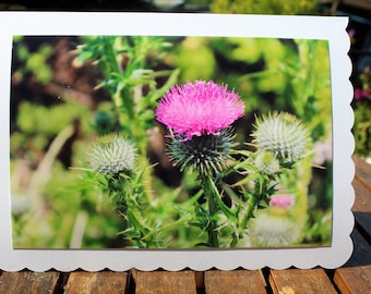 Any occasion photo card - Thistles
