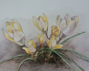 Yellow Crocus Flowers Watercolor Painting