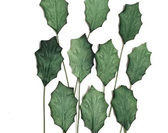 Holly Mulberry Paper Leaves Leaf02