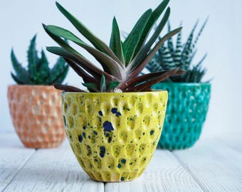 Yellow Ceramic Planter - Air Plant Holder - Modern Succulent Planter - Plant Pot - Plant Holder - Succulent Pot - Cactus Planter