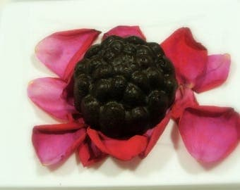 Solid shampoo detox hair (psoriasis) presented on rose petals