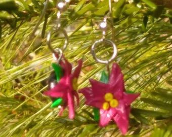 Pointsettia earrings