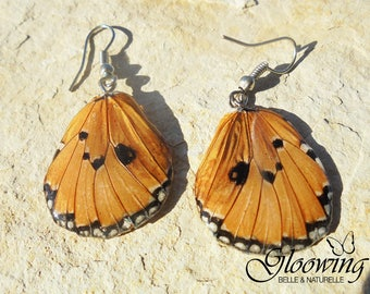 Butterfly women earrings