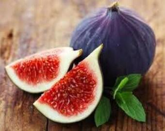 Waffle figs