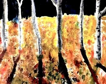 fall trees at night