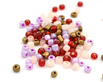 10 gr large 6/0 seed beads purple, nude, red and bronze glass 4mm / MPERRO046