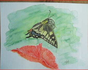 Butterfly ' the swallowtail, watercolor paper Montval 300 mg