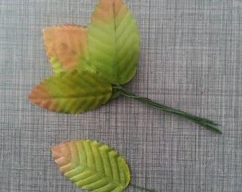 5 Feuilles artificielles 30 x 50mm vert moyen