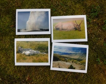 Yellowstone Road Trip - Set of 4 - Handmade Blank Photography Greeting Cards
