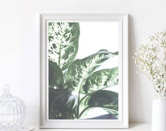 Scandinavian Leaf PRINTABLE Wall Art Decor Perfect for Gallery Walls – Instant Digital Download File