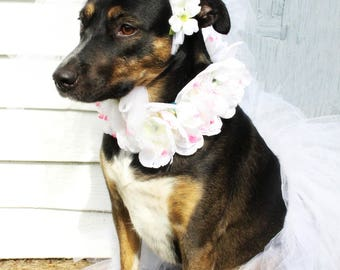 Bridal TuTu with veil/headpiece