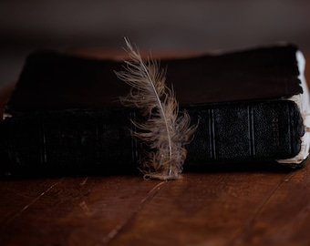 Feather and Bible, feather decor, feather wall art, bible decor, bible wall art, feather photography