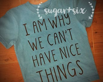 Toddler Tee - I am Why We Can't Have Nice Things - Choose Your Shirt Color!