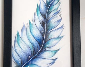 Blue feather drawing