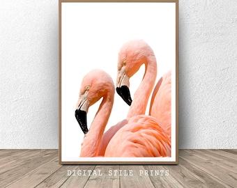 Flamingo print, Printable Flamingo, Flamingo wall art, Tropical decor, Nature print, Instant Download,  Flamingo photography, Large print