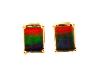 Pair of  Emerald Cut Canadian Ammolite set in 14k Rose  Gold