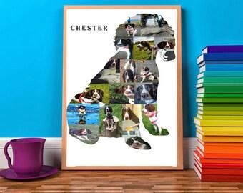 Springer Spaniel Photo Collage Springer Memorial Dog Memory Spinger Lover Springer Gift Spaniel Gift Spaniel Silhouette Unique Print