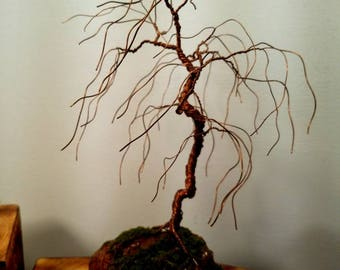 Copper wire bonsai willow