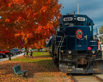 Blue Ridge Train.