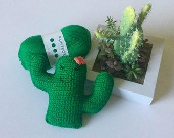 Made to order Crochet cactus, Amigurumi cactus, cactus, Amigurumi, crochet cactus , crochet toy