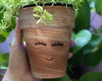 Succula Planter with succulent
