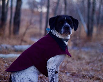 Winter Sporting Dog Coat