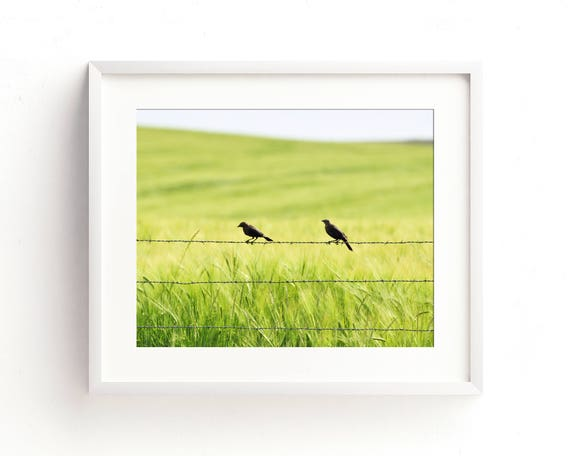 """""""Two in the Barley"""" - fine art photography"""