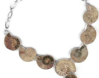 Ammonite Fossil Sterling Silver Necklace 18""