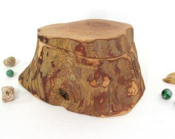Apple Branch Box, cremation urn, pet urn, wood art, outdoorsy gift, wooden jewelry box, gratitude box, wedding anniversary, small urn