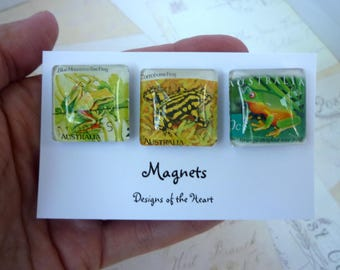 Square Glass Magnet set - FROGS - Recycled Australian Stamp Collection