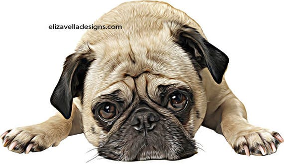 tan black pug dog clipart png clip art Digital Download graphics Image family pet animals printable wall art puppy dogs