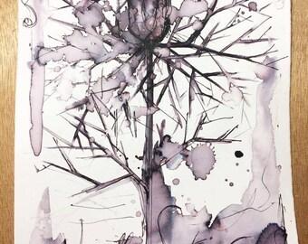 Nigella Sativa (print)
