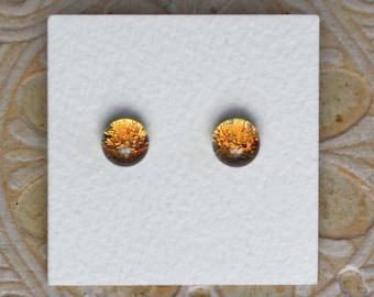 Dichroic Glass Earrings, Petite, Gingerbread DGE-1135