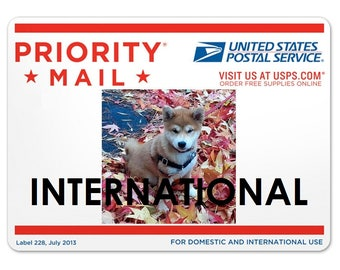 PRIORITY MAIL-- International Shipping